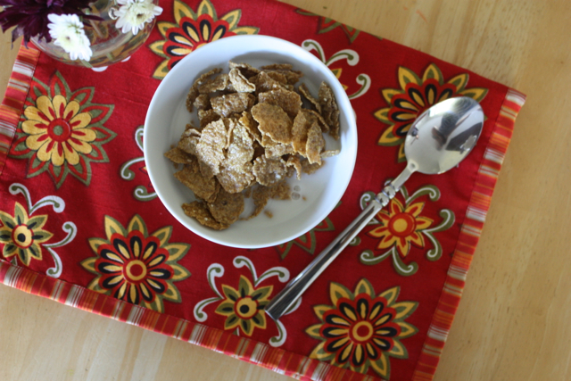 toasted oatmeal flakes cereal from trader joes with rice milk