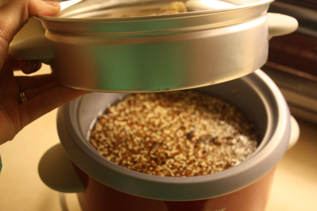 cooking quinoa in the rice cooker