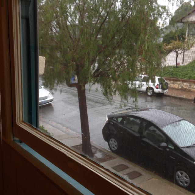 rain in slo